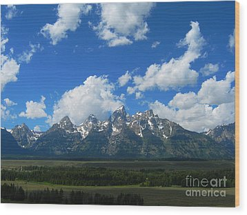 Wood Print featuring the photograph Grand Teton National Park by Janice Westerberg