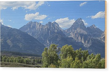 Grand Tetons Wood Print by Diane Mitchell