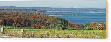 Grand Traverse Winery Lookout Wood Print by Optical Playground By MP Ray