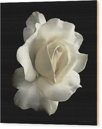 Grandeur Ivory Rose Flower Wood Print by Jennie Marie Schell