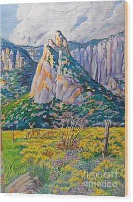 Granite Feature In Unaweep Wood Print by Annie Gibbons