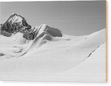 Granite Glacier Wood Print by Ian Stotesbury