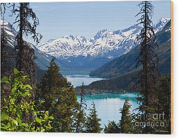 Grant Lake Overlook Wood Print by Chris Heitstuman