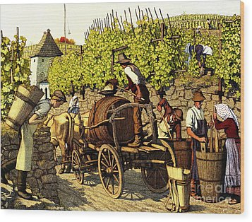 Grape Harvest 1890 Wood Print by Padre Art