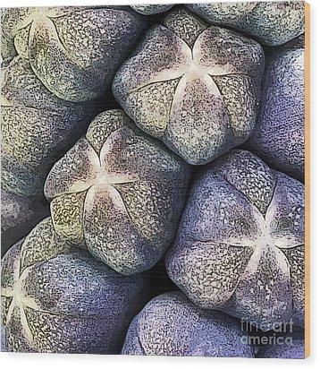 Grape Hyacinth Detail Wood Print by Jane Rix
