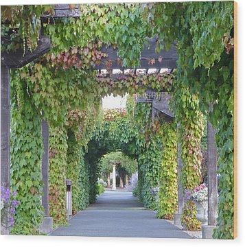 Grape Vine Covered Arbor Wood Print by K L Kingston