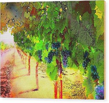 Grape Vines Wood Print by Cindy Edwards