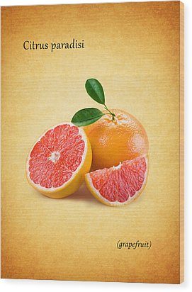 Grapefruit Wood Print by Mark Rogan