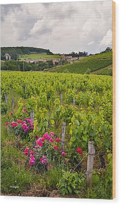 Grapes And Roses Wood Print by Allen Sheffield