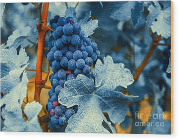 Grapes - Blue  Wood Print by Hannes Cmarits