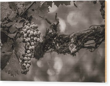 Grapes In Grey 1 Wood Print by Clint Brewer