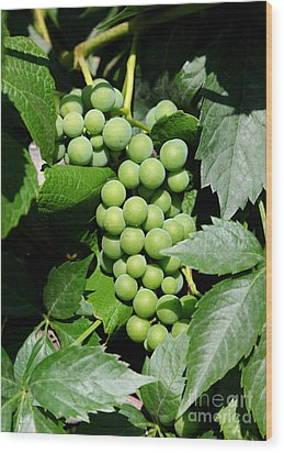 Grapes On The Vine Wood Print by Carol Groenen