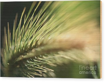 Grass 1 Wood Print by Rebeka Dove