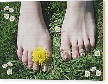 Grass Between My Toes Wood Print by Stephen Norris