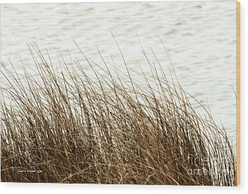 Grass Down By The Shore Of Virginia Beach Wood Print by Artist and Photographer Laura Wrede