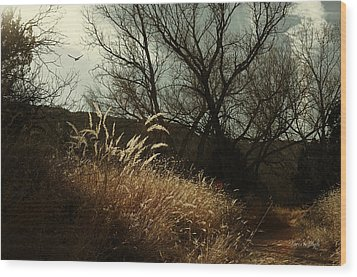 Grasses Of Winter Wood Print by Karen Slagle