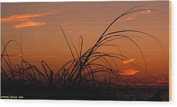 Wood Print featuring the photograph Grassy After Glow by Richard Zentner