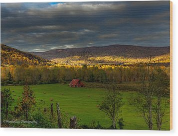Grassy Cove Tennessee Wood Print by Paul Herrmann