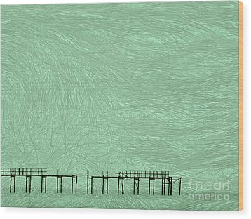 Wood Print featuring the photograph Grassy Flats by Joy Angeloff