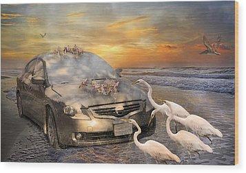 Grateful Friends Curious Egrets Wood Print by Betsy Knapp