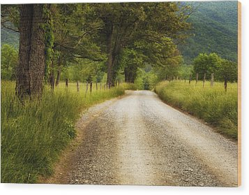 Gravel Road In The Smokies Wood Print by Andrew Soundarajan