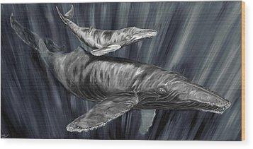 Gray Whales Wood Print