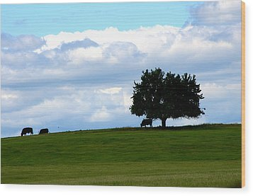 Wood Print featuring the photograph Grazing by Cathy Shiflett