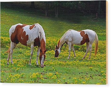Grazing Horses 001 Wood Print by George Bostian