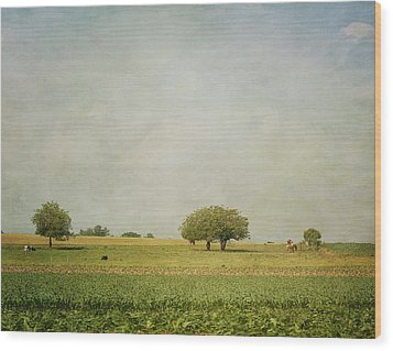 Grazing Wood Print by Kim Hojnacki