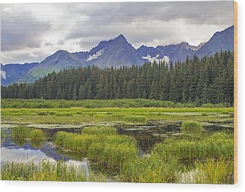 Great Alaskan Outdoors Wood Print by Saya Studios