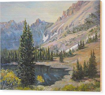 Great Basin Nevada Wood Print by Donna Tucker