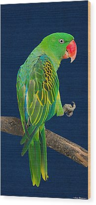 Wood Print featuring the photograph Great-billed Parrot 1 by Avian Resources