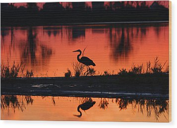 Great Blue Heron At Sunrise Wood Print by Allan Levin