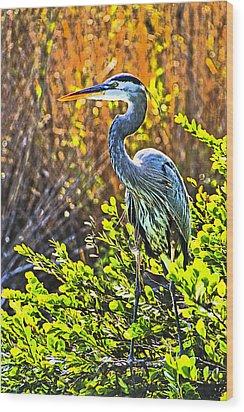 Great Blue Heron Wood Print by Dennis Cox WorldViews