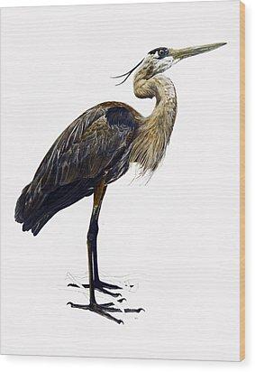 Great Blue Heron Wood Print by Rachel Root