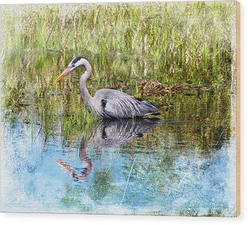 Great Blue Hunter Wood Print by Barbara Chichester
