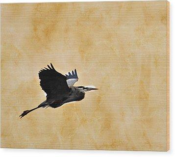 Great Blue In Flight 1 Wood Print by Marty Koch