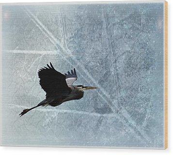 Great Blue In Flight 3 Wood Print by Marty Koch