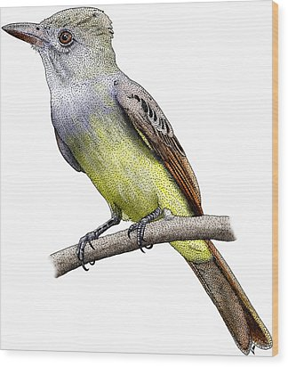 Great Crested Flycatcher Wood Print