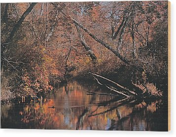 Great Egg Harbor River Wood Print by Greg Vizzi