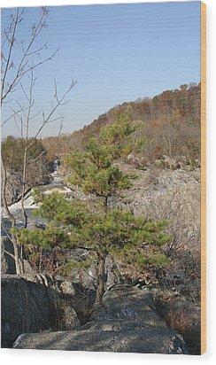 Great Falls Va - 12121 Wood Print by DC Photographer