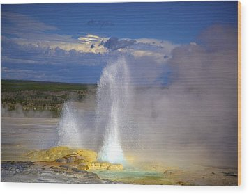 Great Fountain Geyser Wood Print by Terry Horstman