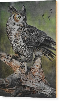 Great Horned Owl On Branch Wood Print by Deborah Benoit