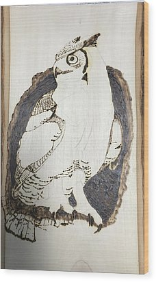 Great Horned Owl Wood Print by Terry Frederick