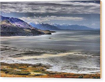 Great Salt Lake From Antelope Island Wood Print