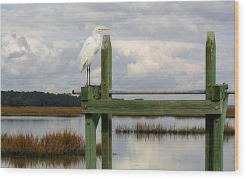Great White Egret On The Marsh Wood Print by Paulette Thomas