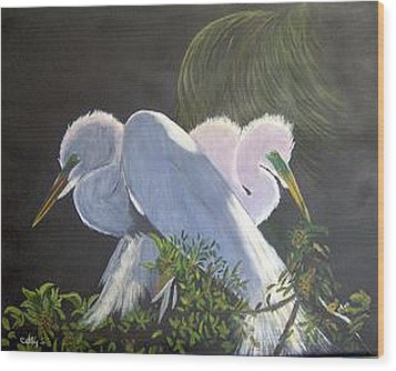 Great White Egrets Wood Print