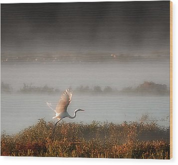 Great White Heron In Morning Mist Wood Print by Lena Wilhite