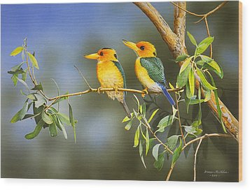 Green And Gold - Yellow-billed Kingfishers Wood Print by Frances McMahon