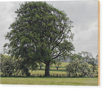 Green And Pleasant Land Wood Print